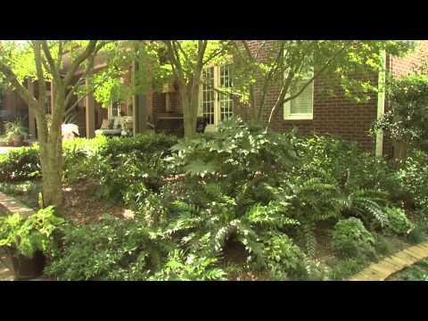 Cool and Relaxing - Southern Gardening TV, October 3, 2012
