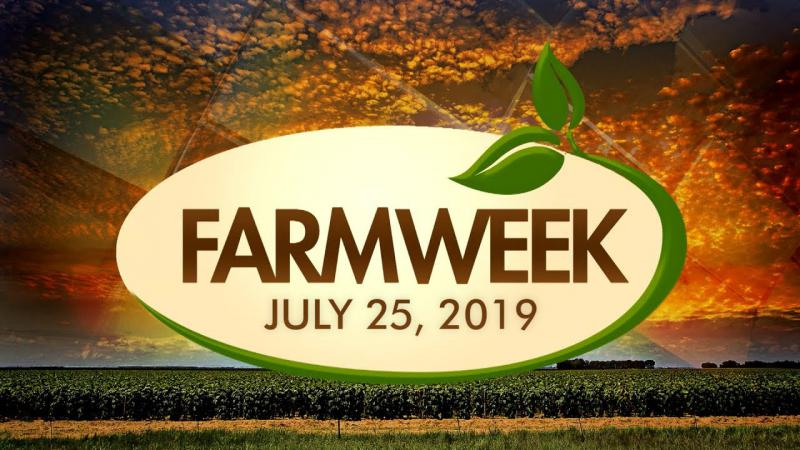 Farmweek | Entire Show | July 25, 2019