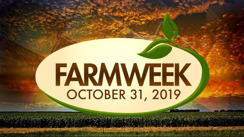 Farmweek | Entire Show | October 31, 2019