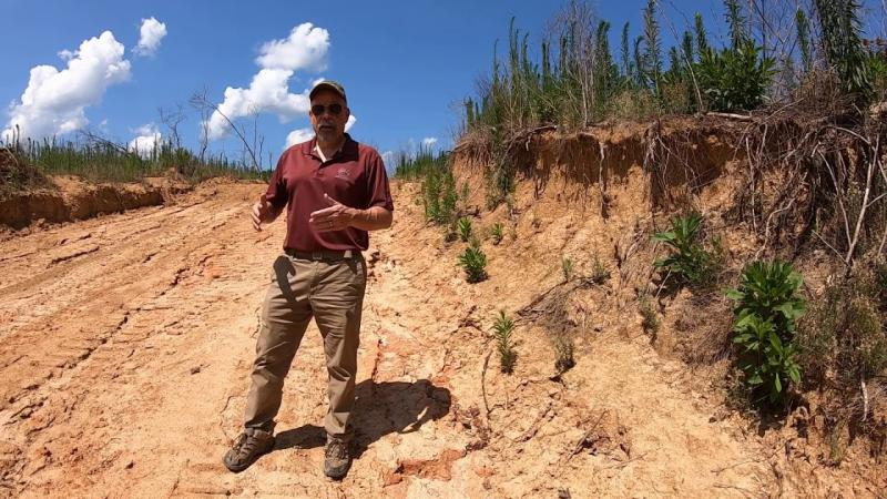 Forestry BMPs Following a Harvest: Good and Bad