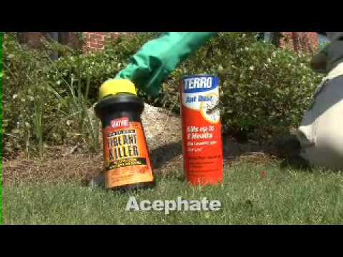 Fire Ant Control - MSU Extension Service
