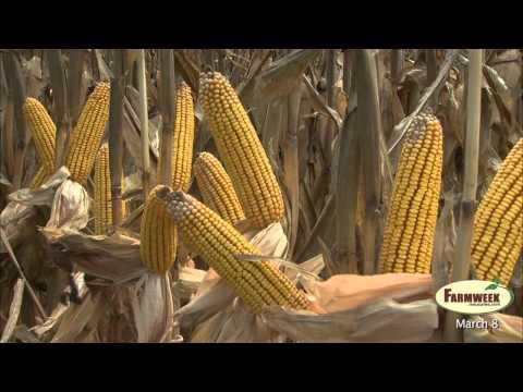 Farmweek - Entire Show - March 8, 2013