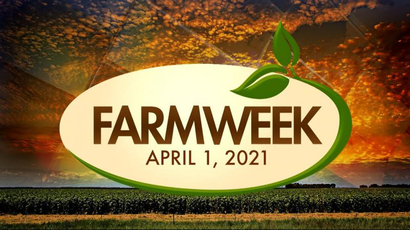 Farmweek | April 1, 2021 | Full Show