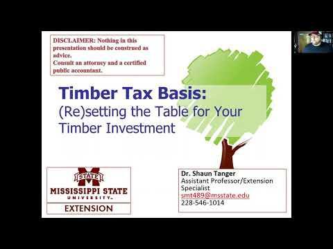 Timber Tax Basis