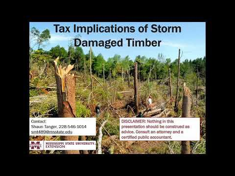 Timber Tax MS: Tax Implications of Storm Damaged Timber - Casualty Losses