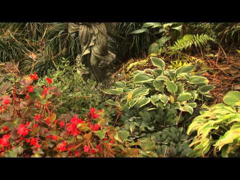 Changing Seasons - Southern Gardening TV, October 31, 2012
