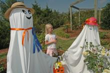 Sidney Dobbs of Hamilton enjoys a visit with some of the ghostly residents of the Scarecrow Trail. The trail winds through the gardens at the North Mississippi Research and Extension Center in Verona and is open to the public on weekdays through Oct. 25.
