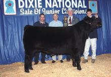 Bryan Williams holds his reserve champion steer in 2001. He is joined by buyers Nicky Alexander and Bruce Deakin, representing Jackson Coca-Cola, and Dr. Lester Spell, commissioner of the Mississippi Department of Agriculture and Commerce. (Photo by Jim Lytle)
