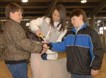 Tyler Soignier, left, helps brace a lamb while his sister, Robyn, and brother, John Ryan, give it a final trim before entering the 2009 Dixie National Sale of Junior Champions.