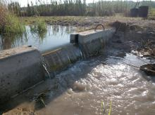 Weirs, also known as check dams, are small dams used to collect water runoff from agricultural fields. They are concrete can be moved to various locations in a drainage ditch. (Photo by MSU Wildlife, Fisheries and Aquaculture /Robbie Kröger)