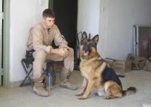 This undated photo shows the handler, Lee, and his dog in Iraq. Lee was killed and Lex was injured in 2007 in a rocket attack in Fallujah. (Photo submitted by Lee family)