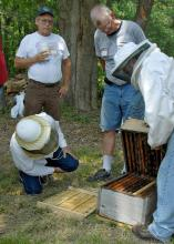 Jon Zawislak from the University of Arkansas Cooperative Extension Service demonstrates how to check a bee hive for swarm cells during a beekeeping field exercise at Tony Homan Apiaries in Shannon. (Photos by Keri Lewis)