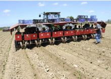 Sixteen workers ride this eight-row transplanter, placing young sweet potatoes in the soil near Vardaman in Calhoun County. (Photos by Scott Corey)
