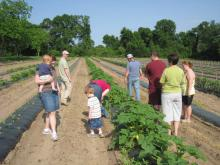 Members of the Steede Farms Community Supported Agriculture, or CSA program, tour the farm with brothers Heath and Mike Steede to learn more about how their food is grown. (Submitted photos)