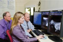 Drs. Andrew Mackin, Erin Brinkman and Todd Archer (from left) study pre- and post-procedural images of a tracheal stent patient at Mississippi State University's College of Veterinary Medicine. (Photo by MSU College of Veterinary Medicine/Tom Thompson)