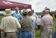 Ted Wallace, a cotton breeder with the Mississippi Agricultural and Forestry Experiment Station, discussed research on nematode resistance in cotton at the Agronomic Crops Field Day at the R.R. Foil Plant Science Research Center in Starkville.