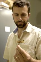 JoVonn Hill, who has gained respect as a leading researcher on grasshoppers in the United States, will care for the Smithsonian Institution grasshopper collection loaned to Mississippi State University. (Photo by MSU Ag Communications/Kat Lawrence)