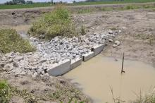 A low-grade weir, such as this one, slows runoff water leaving fields, allowing microbes in the soil and vegetation to pull nutrients out of the water, reducing the nutrients going downstream. (Photo by MSU Ag Communications/Scott Corey)