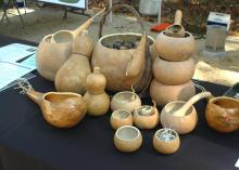 Janet Conners Schlauderaff displayed her hand-crafted, functional gourds at the Piney Woods Heritage Festival held Nov. 16 and 17 at Mississippi State University's Crosby Arboretum. (MSU Ag Communications/Susan Collins-Smith)