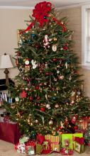 Decorated Christmas tree with gifts under it.