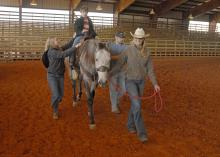 Garrett Sullivan, 10, of Laurel, enjoys a ride on Reno at the Lamar County Fairgrounds in Purvis. Turners and Burners 4-H Club volunteer leader Lona Booth, leading the horse, is assisted by side-walkers Kaitlyn Barber and Ross Mills during the Sweetheart Rodeo on March 16, 2013. (Photo by MSU Ag Communications/Linda Breazeale)