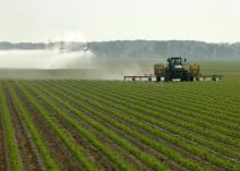 Water for farming and drinking has always been a plentiful resource in Mississippi, and Mississippi State University is taking steps to keep it that way. (File photo/MSU Delta Research and Extension Center)