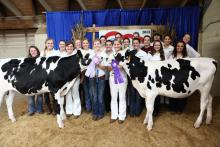 The Mississippi State University Dairy Science Club took home several awards at the Mississippi State Fair on Oct. 11, 2013, including Junior Champion Holstein and Reserve Junior Champion Holstein. Pictured from front left: Hannah Fillyaw, Emmy King, Alexis Caudill, Erin Thompson, Dorothy Claypool, Melissa Steichen, Hailey McGuire, Sarah Allen, Delancey Fortin, Moira Knott, Alexis Parisi, Rebecca Broome, Stephanie Opp, Sydney Tamashiro, Shawna Blau, Jennifer McPherson; back row: Casey Jowers, Kaylin Chaney,