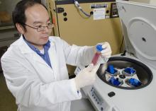 Dr. Henry Wan inspects a vial of influenza virus in his laboratory at the Mississippi State University College of Veterinary Medicine. His influenza research program trains students who are interested in medical research and furthers influenza prevention, diagnosis and treatment information. (Photo by MSU College of Veterinary Medicine/Tom Thompson)
