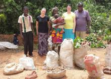 Farmers in Ghana grow cassava and often sell it roadside. Mississippi State University student Alyssa Barrett and professor Laura Lemons worked with an agricultural education program aimed at improving the knowledge of these farmers. From left, local farmers are pictured with Lemons (black shirt), Barrett (yellow shirt) and Mike Oye (hat), the Nigerian professor who developed and delivered the program. (Submitted Photo)