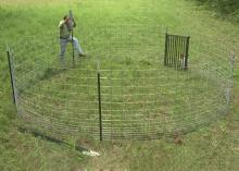 Bill Hamrick, a wildlife associate with the Mississippi State University Extension Service, constructs a corral trap, which wildlife biologists contend is the most effective method for reducing rapidly growing numbers of pigs. (Photo by MSU Ag Communications/Brian Utley)