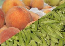 Mississippi State University Extension Service dietitians suggest eating more fruits and vegetables in recognition of Natural Fat-Free Living Month in January. (File photo by MSU Ag Communications/Kevin Hudson)