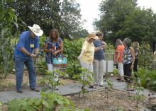 Jim Farmer and Patty Sherrill gathered ideas for Jim's Pumpkin Patch in Rolling Fork June 13, 2017, at the Heritage Demonstration Garden at the Vicksburg National Military Park. (Photo by MSU Extension Service/Bonnie Coblentz)