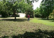 A man stands near a tree in a home's front yard where the majority of the lawn has been uprooted by wild hogs.