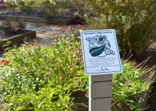 A closeup of the official Monarch Waystation sign is shown in the revitalized children's educational garden at the MSU Crosby Arboretum