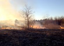 Strong winds and fires can ruin an otherwise beautiful day. Before you light a fire, consider conditions and control options if the fire begins to move in unwanted directions. (Photo by MSU Extension Service/Andrew Smith)