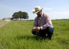 A man wearing a cowboy hat squats down in a grassy field to look at a specimen.