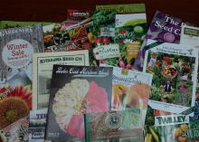 The colorful covers of about 20 gardening catalogs are fanned out on display.
