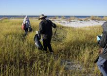 A man in the center of the photo is shown from the back wearing a bucket hat and black wind suit picking up trash in tall grass along a beach. Another person with a gray jacket and red backpack is in front of him with a trash bag, while another person in a black jacket with the hood up takes pictures. A blue sky and ocean water are in the background.
