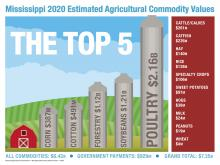 Chart shows top agriultural commodities in Mississippi.