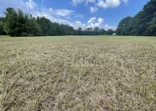 A pasture has nothing but brown stubble.