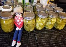 An elf doll sits among a rows of sliced pickles in jars.