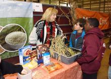 Lisa Stewart, an agent with the Mississippi State University Extension Service in Webster County, explains the importance of rice to Clayton Griffin and Jalen Washington, third-graders from Houston Upper Elementary School, at the FARMtastic event at the Mississippi Horse Park near Starkville on Nov. 13, 2014. (Photo by MSU Ag Communications/Kevin Hudson)