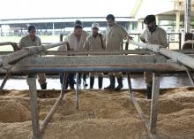 Agricultural professionals from Pakistan look on during a visit to Mississippi State University as dairy herder Kenneth Graves rakes sand at the Joe Bearden Dairy Research Center on Aug. 10, 2015. Similar groups from Bosnia-Herzegovina and Albania also visited MSU over the past month to enhance their skills in agriculture. (Photo by MSU Ag Communications/Kat Lawrence)