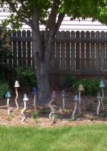 This ceramic mushroom patch  is surrounded by beautiful Apricot Beauty tulips in the spring and flowering annuals, such as marigolds, later in the year.