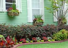 When it's cold outside, it's easy to make elaborate garden plans for the spring. These gardens of our dreams may be too big to properly maintain, so start small and add more garden as time allows. (MSU Extension Service photo)