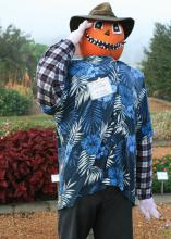 Mississippi State University Extension Service horticulturist Gary Bachman -- not just his scarecrow -- will be on hand at the Fall Flower and Garden Fest to answer questions and talk about landscaping. (Photo by MSU Extension Service/Gary Bachman)