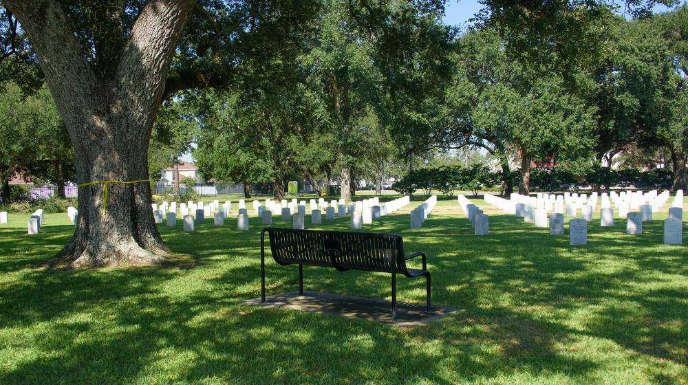 A black metal bench overlooking the cemetery sits under the shade of a large, green tree.