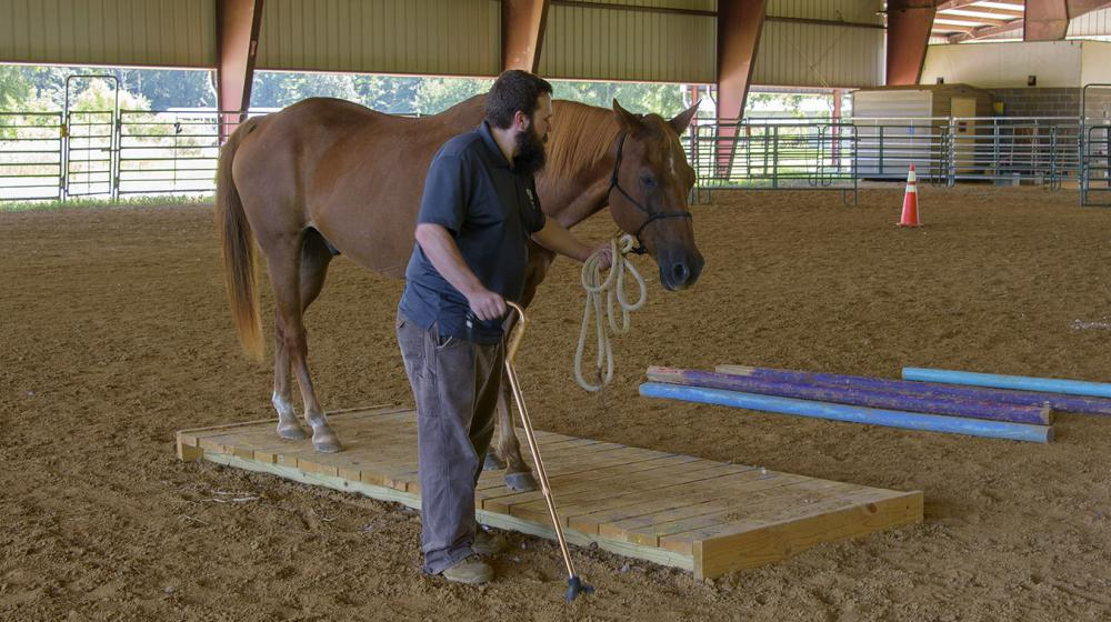 Lance McElhenney working with his horse in an arena.