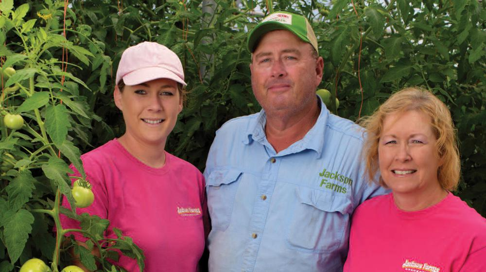 A young woman with an older man and woman standing next to a tomato plant.