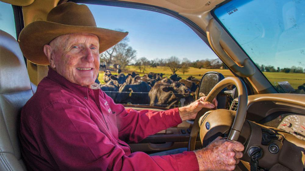 A man sits behind the steering wheel of a car parked in a cow pasture filled with cows.